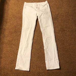 Denim - LOFT jeans